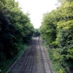 Zopo C2 - zdjęcie 6